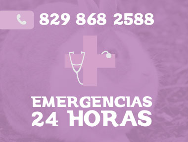 Emergencia-2